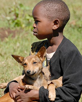 A young boy has just gotten his dog vaccinated for rabies.