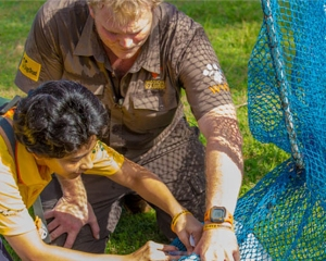 Dr. Luke Gamble vaccinates a dog in India while a woman assists
