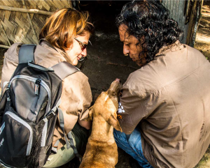 Volunteers interact with a dog.
